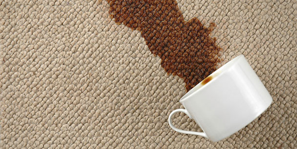 Pro Clean Carpet Care Professional Carpet Cleaning